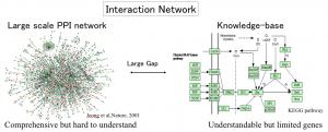 実験データをそのまま使って得られるネットワークと知識ベースで書かれるネットワークの間には大きなギャップがある